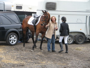 The reason why – Horses chose me as a coaching tool.